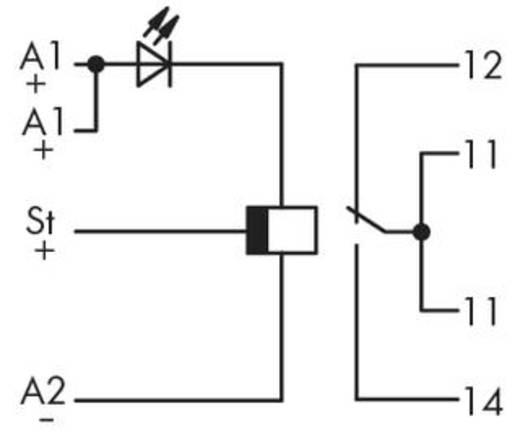 WAGO 286-442 Zeitrelais Monofunktional 230 V/AC 1 St. 1 Wechsler