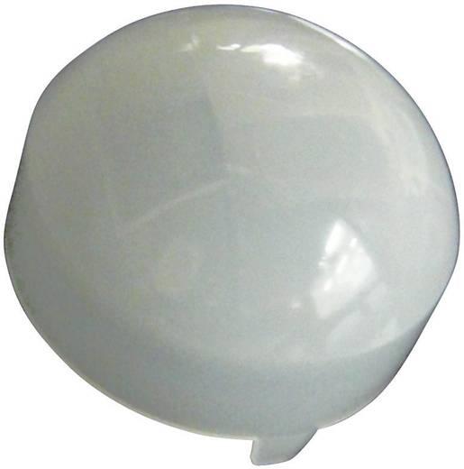 Fresnel-Linse Murata PPGI 0601 1 St. (Ø) 21 mm