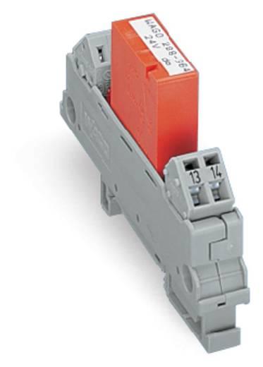 Relaisplatine bestückt 1 St. WAGO 288-564 1 Schließer 24 V/DC, 24 V/AC