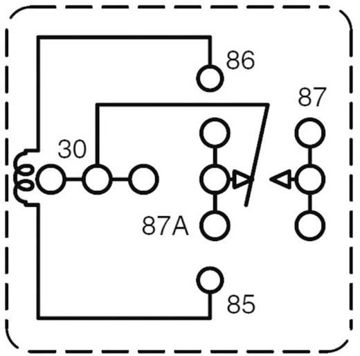Kfz-Relais 24 V/DC 60 A 1 Wechsler Zettler Electronics AZ983-1C-24D