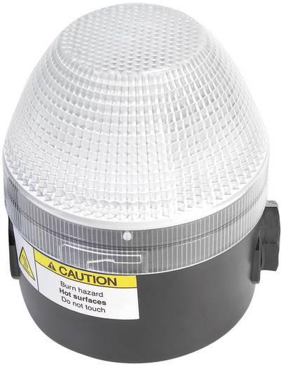 Signalleuchte LED Auer Signalgeräte NMS-HP Klar Klar Dauerlicht 110 V/AC, 230 V/AC
