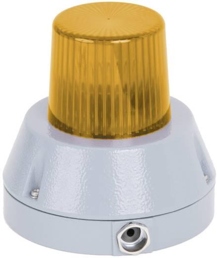 Signalleuchte Auer Signalgeräte BZG Orange Orange Blitzlicht 230 V/AC