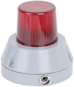 Témoin lumineux Auer Signalgeräte 741032313 230 - 240 V/AC flash IP66 1 pc(s)