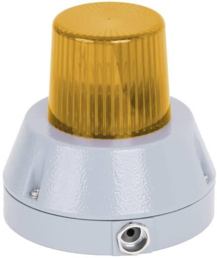 Signalleuchte Auer Signalgeräte BZG Orange Orange Blitzlicht 24 V/DC
