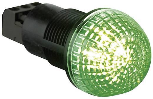 Signalleuchte LED Auer Signalgeräte ITS Rot, Grün Dauerlicht 24 V/DC, 24 V/AC