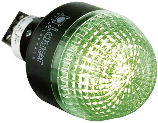 Signalleuchte LED Auer Signalgeräte IDM Rot, Grün Dauerlicht 24 V/DC, 24 V/AC