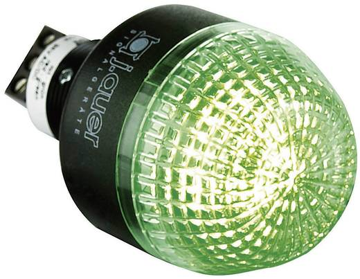 Signalleuchte LED Auer Signalgeräte IDL Rot, Grün Dauerlicht 24 V/DC, 24 V/AC