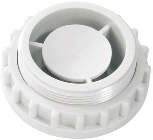 Signalsummer Auer Signalgeräte ESZ-K Dauerton, Pulston 230 V/AC 90 dB