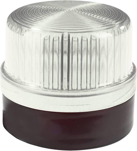 Signalleuchte Auer Signalgeräte WLG Klar Klar Dauerlicht 230 V/AC