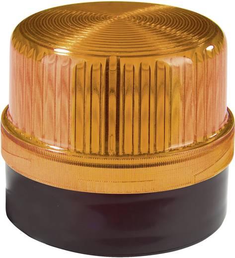 Signalleuchte LED Auer Signalgeräte DLG Orange Orange Dauerlicht 24 V/DC, 24 V/AC