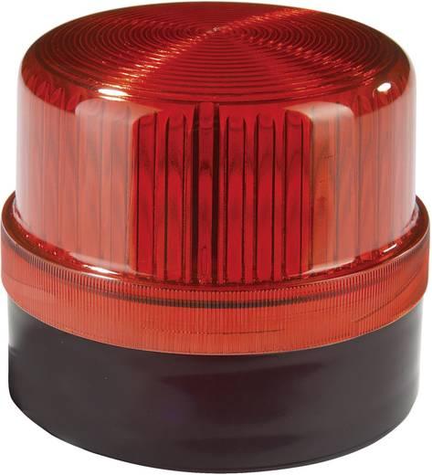 Signalleuchte LED Auer Signalgeräte DLG Rot Rot Dauerlicht 230 V/AC