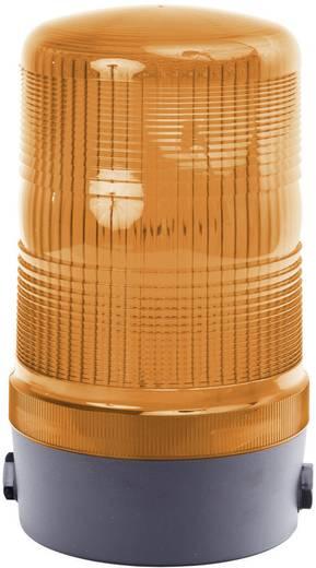 Signalleuchte Auer Signalgeräte MFM Orange Orange Blitzlicht 12 V/DC, 12 V/AC, 24 V/DC, 24 V/AC