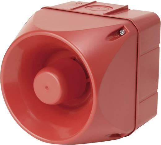 Signalsirene Auer Signalgeräte ASM Mehrton 24 V/DC, 24 V/AC 113 dB