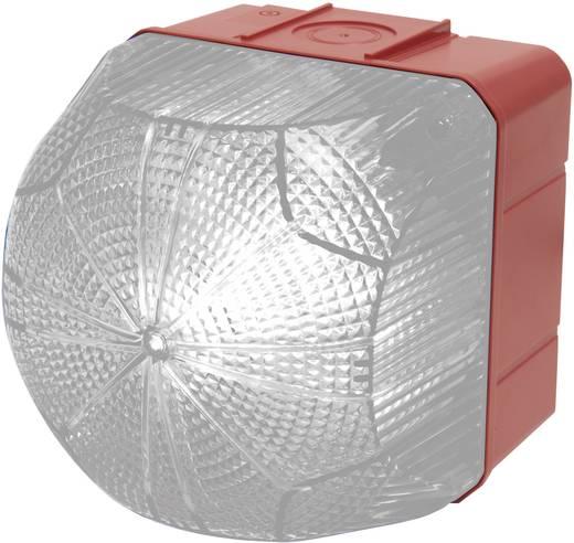 Signalleuchte LED Auer Signalgeräte QDM Klar Weiß Dauerlicht, Blinklicht 110 V/AC, 230 V/AC