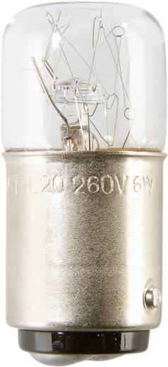 Auer Signalgeräte Leuchtmittel Glühlampe GL06 230/240 V 6 W, BA15d