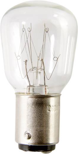 Auer Signalgeräte Leuchtmittel Glühlampe GL22 24 V 25 W, BA15d