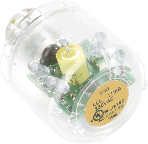 Auer Signalgeräte LED-Lampe LED-Dauerlicht LLL Orange, 12 V AC/DC, BA15d