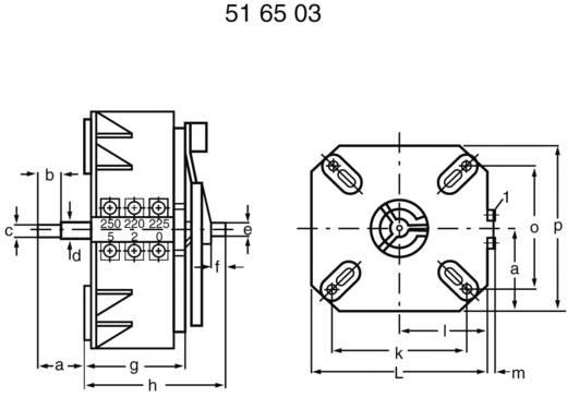 Regeltransformator 1 x 230 V 1000 VA 4 A ESS 104 Thalheimer