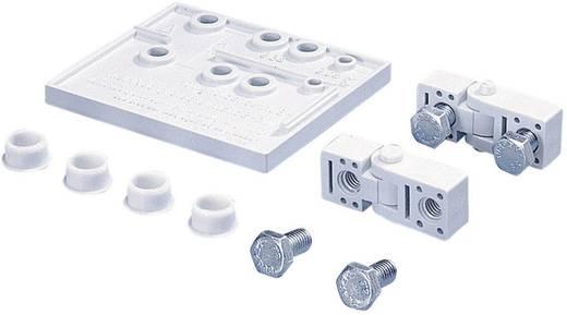 Scharnier Polystyrol Grau-Weiß (RAL 7035) Rittal PK PK 9581.000 2 St.