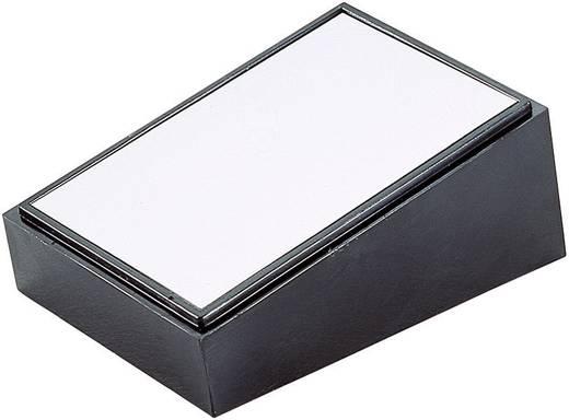Pult-Gehäuse 84 x 56 x 36 Kunststoff, Aluminium Schwarz, Silber TEKO PULT 101 1 St.