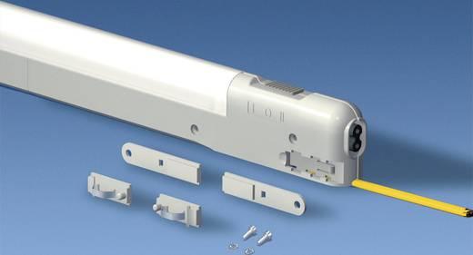 Kompaktleuchte Polyamid Hell-Grau (RAL 7035) (L x B x H) 455 x 24 x 59 mm Rittal SZ 4140.010 1 St.