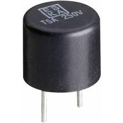 Mini pojistka ESKA 887017G, radiální, kulatý, 1 A, 250 V, T pomalá, 1000 ks