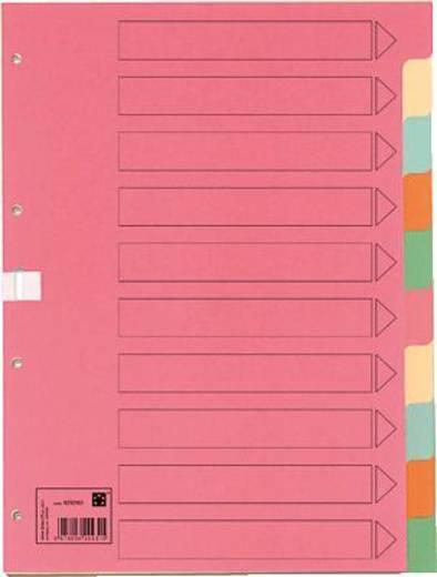 5 Star Kartonregister 5-farbig B210/223xH297 mm blanko 10-teilig 175 g/qm