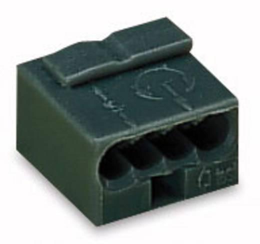 Dosenklemme starr: -0.8 mm² Polzahl: 4 WAGO 1 St. Dunkel-Grau