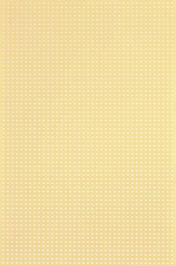 Platine ohne Cu-Auflage Hartpapier (L x B) 160 mm x 100 mm Rastermaß 2.54 mm WR Rademacher WR-Typ 716-5 Inhalt 1 St.