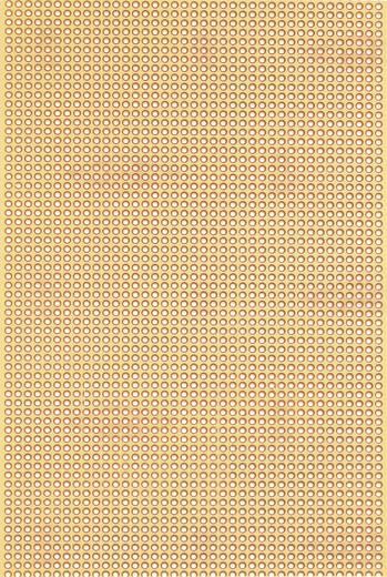 Platine Hartpapier (L x B) 160 mm x 100 mm 35 µm Rastermaß 2.50 mm WR Rademacher WR-Typ 815-5 Inhalt 1 St.
