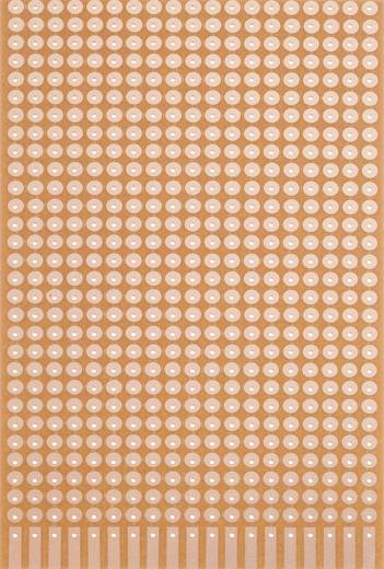 Platine Hartpapier (L x B) 160 mm x 100 mm 35 µm Rastermaß 5.08 mm WR Rademacher WR-Typ 821 Inhalt 1 St.