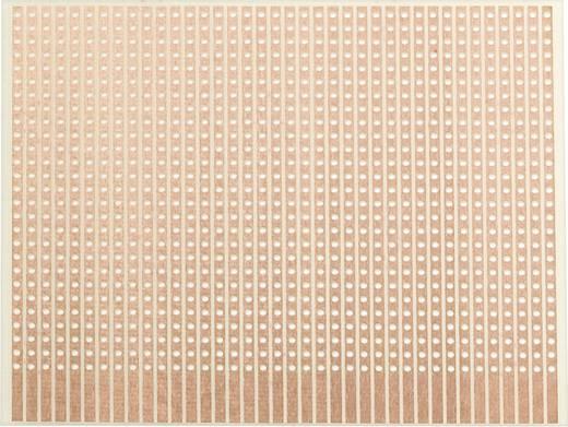 Experimentierplatine Epoxyd (L x B) 80 mm x 50 mm 35 µm Rastermaß 2.54 mm WR Rademacher WR-Typ 906-1 Inhalt 1 St.