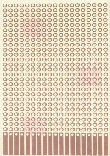 Experimentierplatine Epoxyd (L x B) 80 mm x 50 mm 35 µm Rastermaß 2.54 mm WR Rademacher WR-Typ 907-1 Inhalt 1 St.