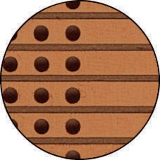 Experimentierplatine Hartpapier (L x B) 160 mm x 100 mm 35 µm Rastermaß 5.08 mm WR Rademacher WR-Typ 721 Inhalt 1 St.