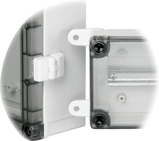 Scharnier ABS Licht-Grau Fibox TH A 2 St.
