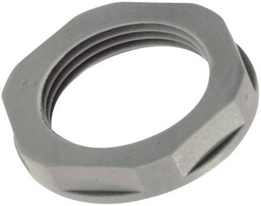 Gegenmutter M16 Polyamid Licht-Grau (RAL 7035) LAPP SKINTOP® GMPL-GL-M16 x 1.5 1 St.