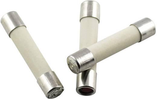 Feinsicherung (Ø x L) 5 mm x 25 mm 4 A 250 V Mittelträge -mT- ESKA 52823 Inhalt 10 St.