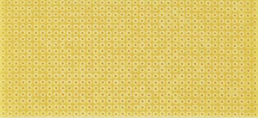 Platine ohne Cu-Auflage Hartpapier (L x B) 100 mm x 75 mm Rastermaß 2.54 mm WR Rademacher WR-Typ 712-2 Inhalt 1 St.