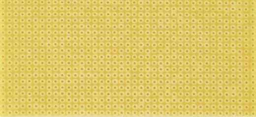 Platine ohne Cu-Auflage Hartpapier (L x B) 50 mm x 100 mm Rastermaß 2.54 mm WR Rademacher WR-Typ 712-1 Inhalt 1 St.