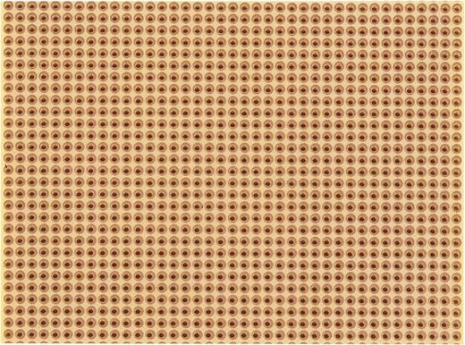 Platine Hartpapier (L x B) 100 mm x 75 mm 35 µm Rastermaß 2.54 mm WR Rademacher WR-Typ 811-2 Inhalt 1 St.