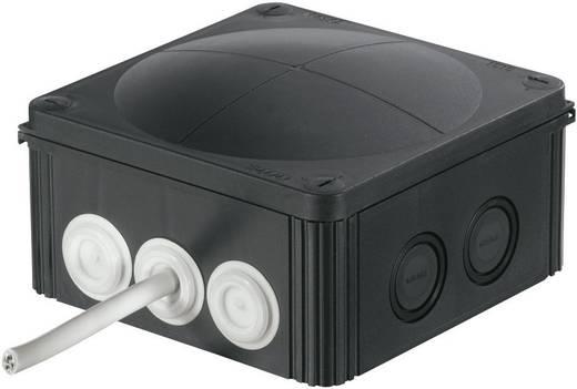Kabeldurchführung Klemm-Ø (max.) 17 mm Polyamid, TPE (Geruchneutrales Spezialgummigemisch) Schwarz (RAL 9005) Wiska Cl