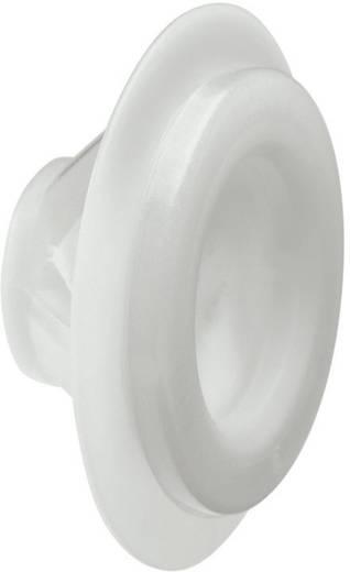 Kabeldurchführung Klemm-Ø (max.) 10 mm Polyamid, TPE (Geruchneutrales Spezialgummigemisch) Licht-Grau (RAL 7035) Wiska Clixx 16 1 St.