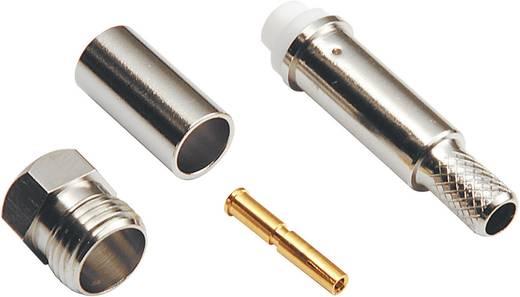 FME-Steckverbinder Buchse, gerade 50 Ω BKL Electronic 0412004 1 St.
