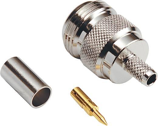 N-Reverse-Steckverbinder Buchse, gerade 50 Ω BKL Electronic 419504 1 St.