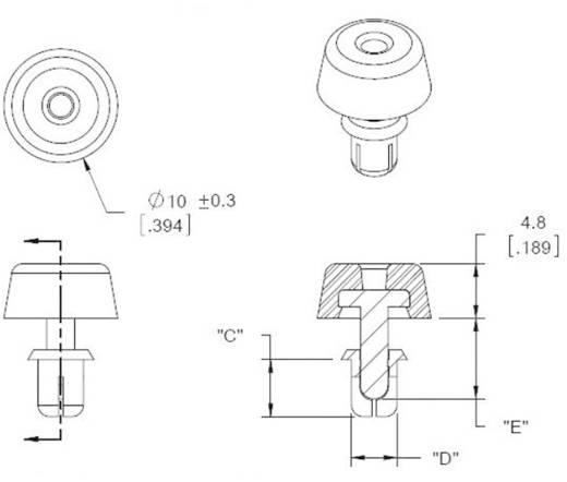 Richco FSR-3 Gehäusefuß mit Spreizbefestigung Polyamid Schwarz 1 St.