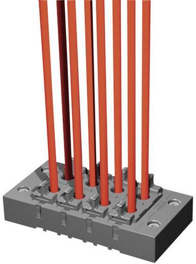 Kabeleinführungsrahmen Polyamid Schwarz Rittal 2400910 1 St.