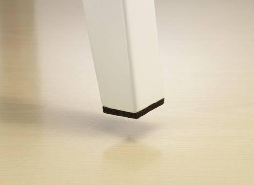Filzgleiter selbstklebend Braun (L x B x H) 100 x 80 x 4 mm Conrad Components FP8005BN 1 St.