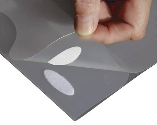 Klettelipse zum Aufkleben Haft- und Flauschteil (L x B x H) 35 x 12 x 0.8 mm Weiß Fastech 686-010-Bag 12 St.