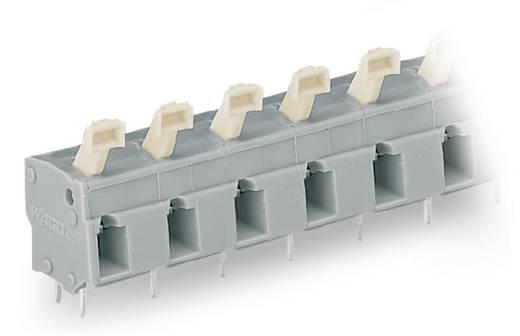 Federkraftklemmblock 2.50 mm² Polzahl 4 257-654/000-009/999-950 WAGO Licht-Grau 100 St.