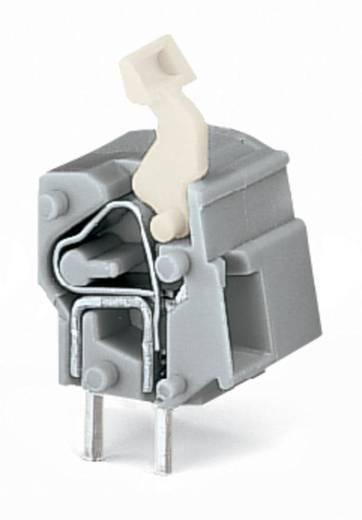 Federkraftklemmblock 2.50 mm² Polzahl 1 WAGO Licht-Grau 300 St.